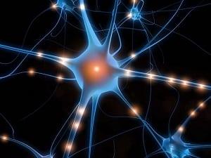 """Master-Formazione-Formatori-corso-""""Apprendimento-in-Azione""""-neurone"""