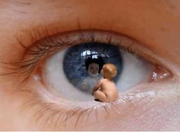 Il-Bambino-Interiore-ferito-ecco-come-blocca-il-denaro-www.RicchezzaVera-2 Chi blocca la nostra abbondanza?