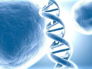 DNA: il proiettore 4D