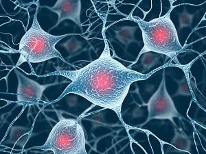 Come Essere Felici allenando i Tuoi Neuroni Neuroni