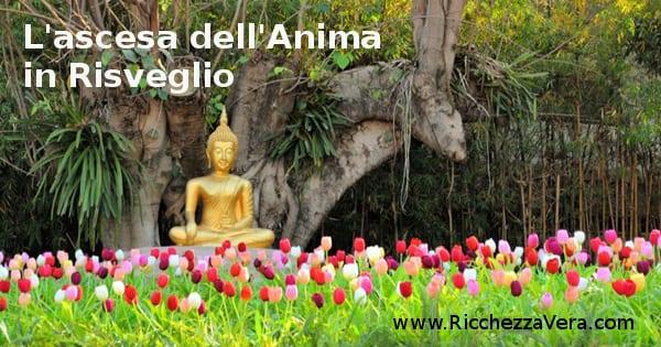 Risveglio Spirituale Ascesa dell'Anima